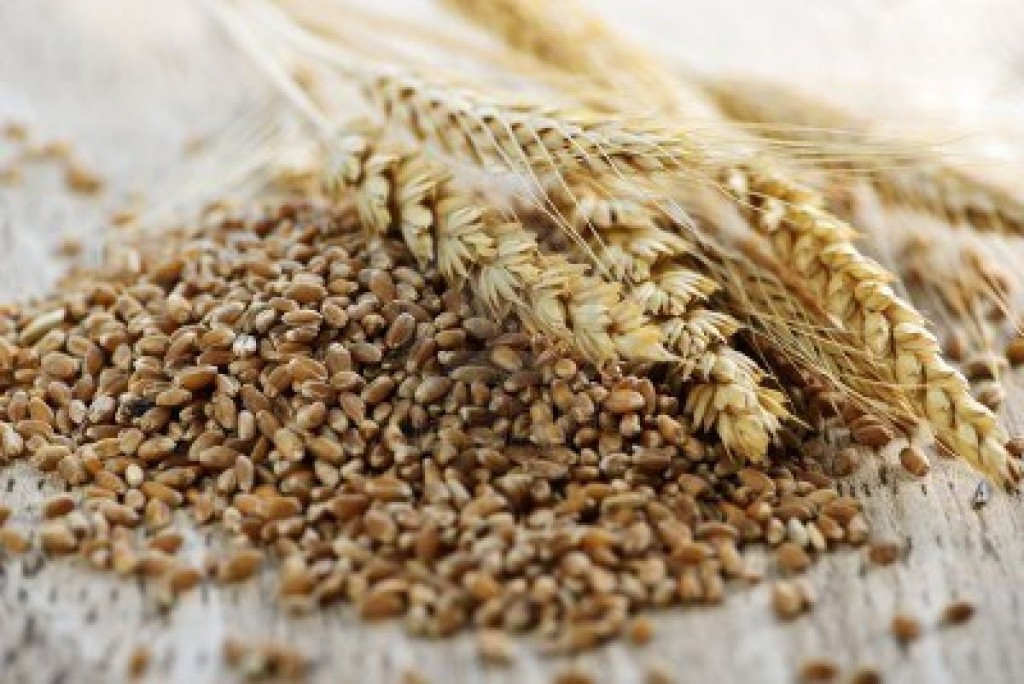 What are whole grains? International Diabetes Association